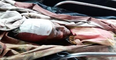 কুমিল্লায় সড়ক দুর্ঘটনায় এক বৃদ্ধা নিহত