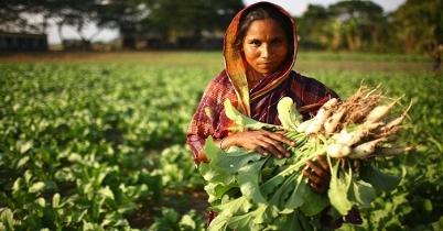 আন্তর্জাতিক 'গ্রামীণ নারী দিবস'-এ তাদের ন্যায্যতা নিশ্চিতের দাবি