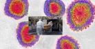 করোনা জরিপ : এ পর্যন্ত ৮২ হাজারের বেশি প্রাণ কেড়ে নিলো ভাইরাসটি