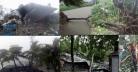 ঘূর্ণিঝড় বুলবুল আট জেলায় ১৩ জনের প্রাণ কেড়ে নিল